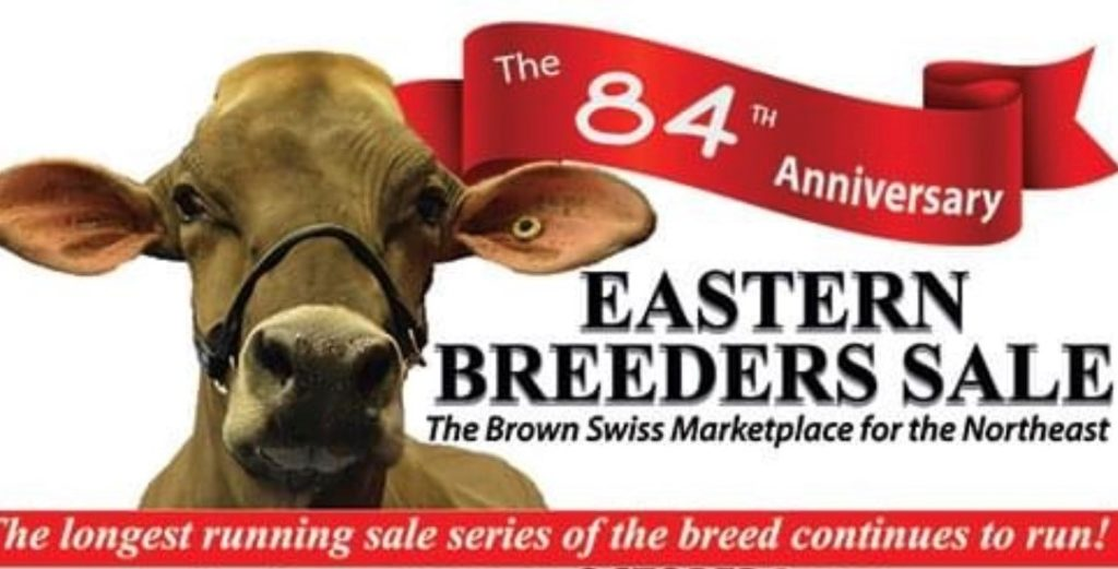 Eastern Breeders Sale